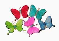 Farfalla Piume Magnetica